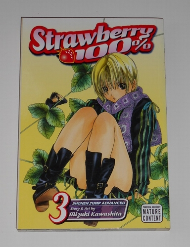 Strawberry 100% vol. 3