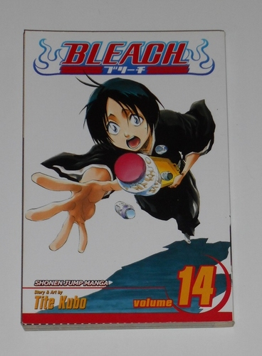 Bleach vol. 14